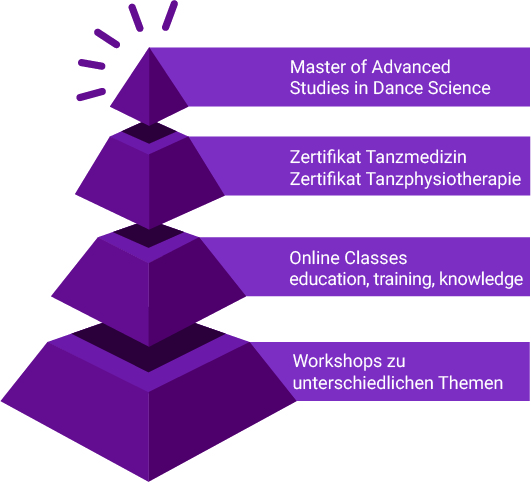 ta.med-Ausbildungspyramide