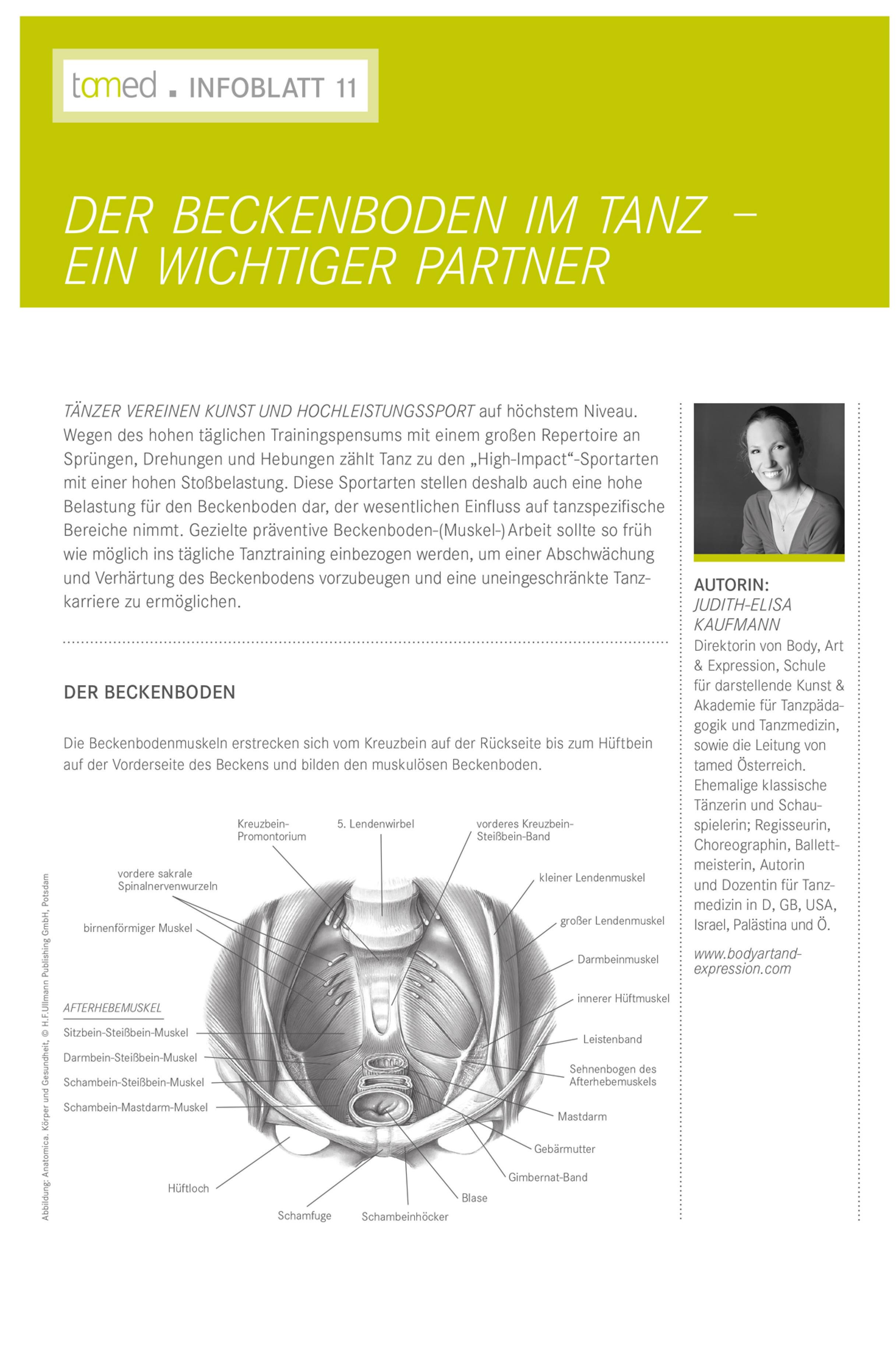 Infoblatt 11 - Der Beckenboden im Tanz